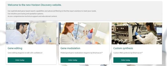 Horizon website screenshot