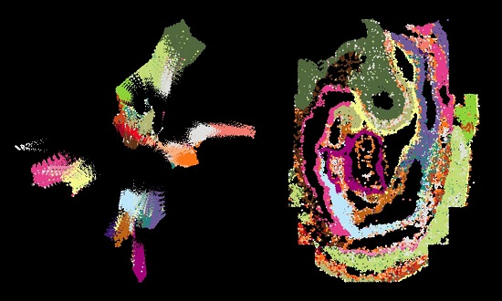 the spatial mouse atlas_ mage credit: Shila Ghazanfar, CRUK Cambridge Institute. Design credit: Karen Arnott, EMBL-EBI.