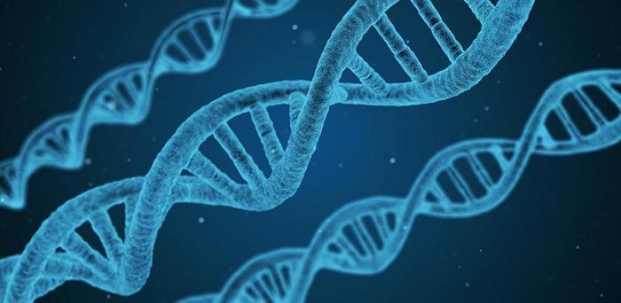 DNA  Credit: Arek Socha on Pixabay