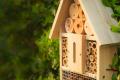 Bee hotel_ Citizen Science